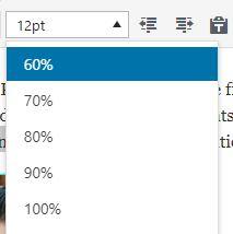 Font Size Option